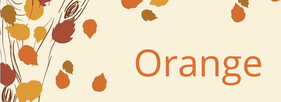 Orange-Slider-2016